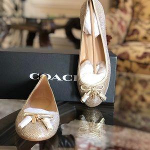 NIB Coach glitter benni flat ballet shoes sz 9